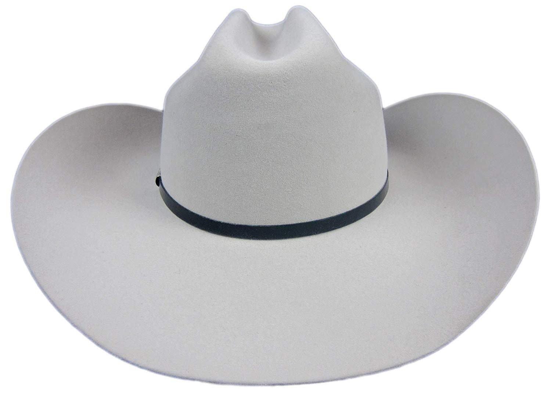 7a99be4ddedaf Stetson Del Norte 6X Silver Grey Cowboy Hat 7 3 8 Oval 4 1 4